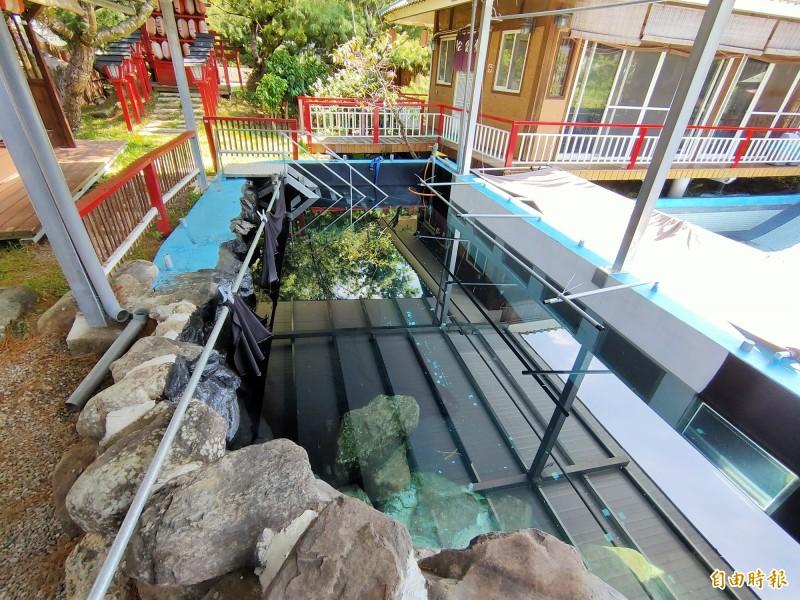 熱愛攝影的陳男還在民宿園區內備有水中攝影區。(記者佟振國攝)