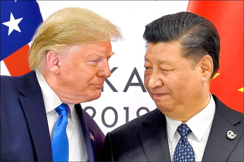 美國總統川普明顯想在連任選戰中打中國牌,但中方表明無意干涉美國選舉。圖為去年六月川普在二十國峰會上與中國國家主席習近平會面。(美聯社)