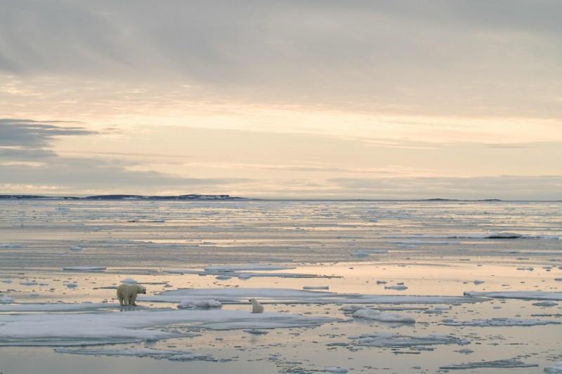 位於北極圈內的斯瓦巴群島25日氣溫創下歷史新高,打破了41年的紀錄。(法新社)