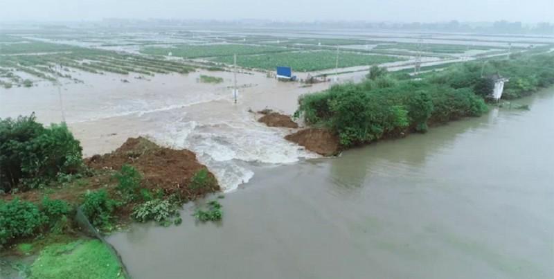 爲減輕巢湖持續高水位的壓力,安徽省合肥市肥西縣26日在蔣口河的河堤上挖掘出約100公尺的分洪口,讓蔣口河「主動潰堤」。(翻攝自微博)
