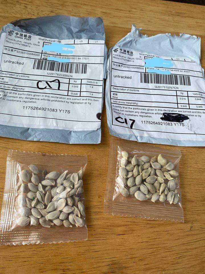 美國近期有至少27個州的農業部表示有民眾收到來自中國的可疑包裹,裡頭都是不明種子。(圖擷取自華盛頓州農業部臉書)