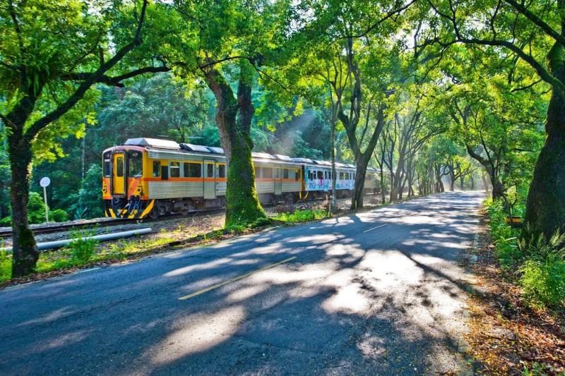 集集鎮有綠色隧道、集集支線火車,日月潭風景區管理處將在10月24日舉辦「集鐵小鎮‧瘋鐵馬」活動,讓遊客徜徉集集,體驗綠隧追火車的樂趣。(日管處提供)