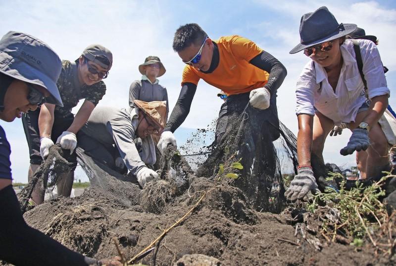廢棄冰箱、麻將丟海邊...2000人環島淨灘 清除近8噸垃圾 - 生活
