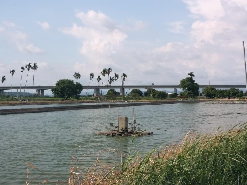 九如鄉李姓父子的養殖魚塭拿到首張高屏溪河川公地圍築魚塭使用許可書。(第七河川局提供)