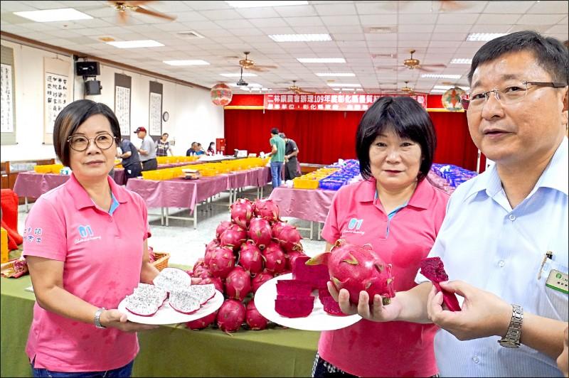 二林農會設立「農民直銷站」,農民推出250元禮盒紅龍果,引發「農遊券」爆賣潮。(記者顏宏駿攝)