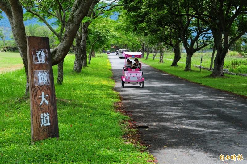 兆豐農場是源興牛的研發基地,也是李登輝最後夢想「台灣和牛」的家,農場今天把園區一條長約2公里的林蔭大道,命名「登輝大道」。(記者花孟璟攝)
