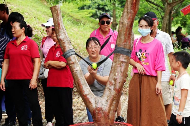 旗山南勝社區用荔枝木製作放大版的大地彈弓。(記者許麗娟翻攝)