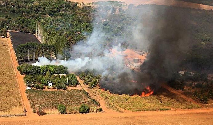 巴西潘特納爾濕地7月出現1669起野火,創下22年來新紀錄。(法新社)