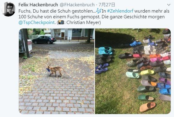 狐狸的贓物被起出。(圖擷自@FHackenbruch推特)