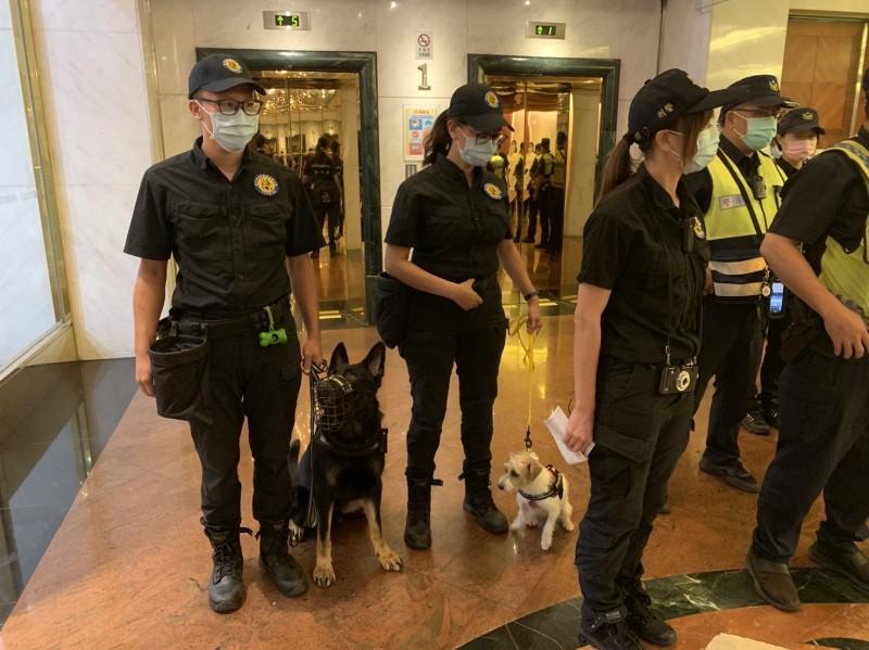 歐迪和JJ分別是警犬隊內體型最大和最小的,已經執行過花博及燈會等多次勤務,一起出任務形成有趣的「反差萌」。(記者何宗翰翻攝)