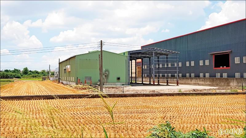 過去四年統計,農地違規新增工廠至少317間、占用農地逾120.2公頃,依法都需拆除。(記者簡惠茹攝)