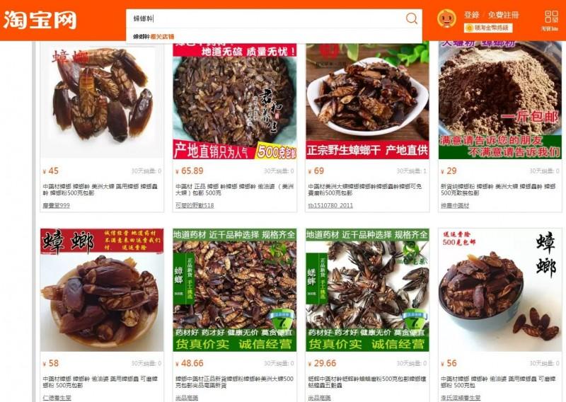 中國知名購物網站「淘寶網」上,眾多中藥商家販售一款國人較不熟悉的中藥材「蟑螂乾」。(圖擷取自淘寶網)