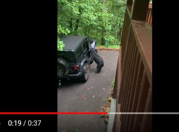 美國田納西州一名男子上月帶老婆到山區度假,遇上一隻黑熊亂入,還打開車門疑似想上車,男子急中生智用「老爸訓斥小孩的口吻」向牠大喊:「不行!不能這樣!」沒想到黑熊竟乖乖離開。(圖擷取自YouTube)