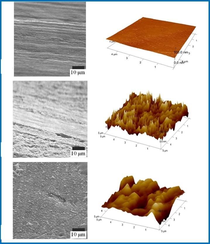 圖為奈米塗層表面結構樣貌。(記者蔡彰盛翻攝)