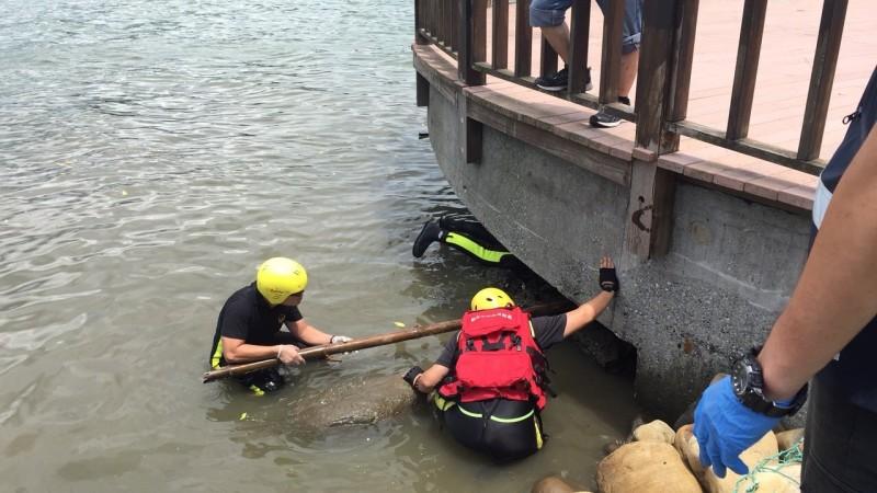 新北市八里區龍米路一段河堤一處觀景台今中午12時許,有釣客發現半顆腐壞頭顱。(記者陳薏云翻攝)