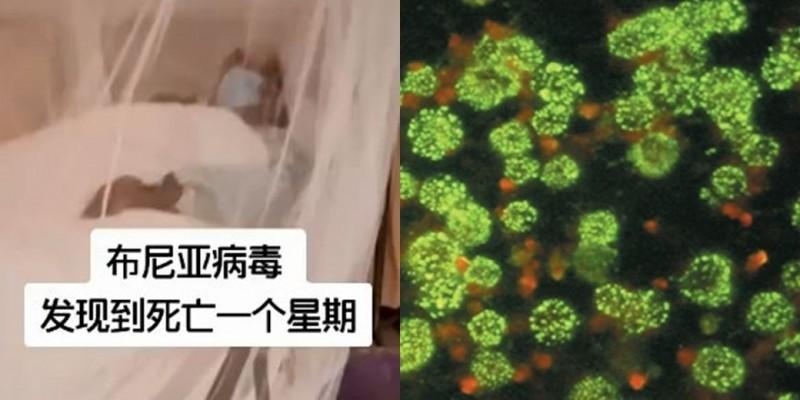 中國病患家屬表示,家族成員患病後相繼離式。而該病毒在10年前就曾在中國爆發疫情。(左圖取自微博,右圖取自新英格蘭醫學期刊)