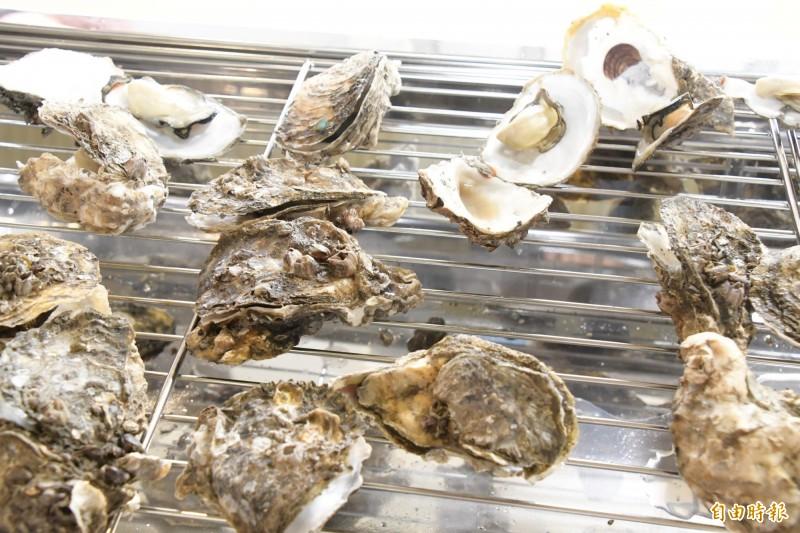一年一度的王功漁火節8月15、16日兩天登場,4000個免費烤蚵名額,開放網路報名不到半天額滿。(記者張聰秋攝)