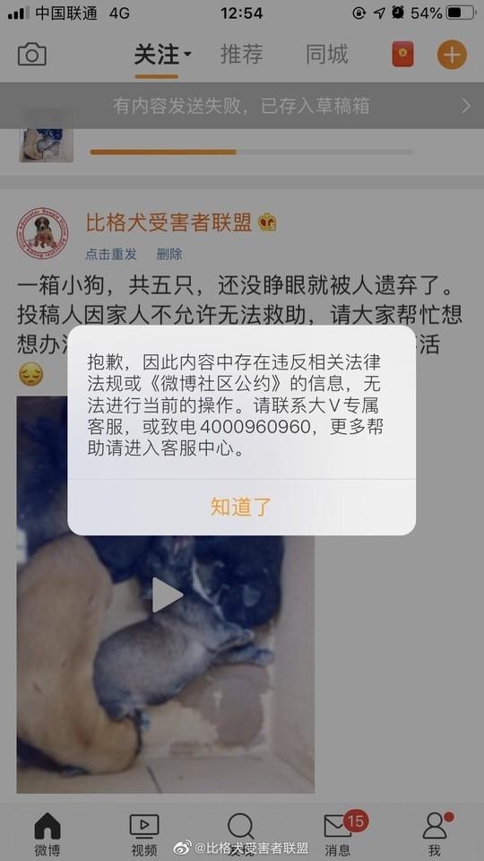 「一箱小狗,共五隻」居然也犯中國大忌 微博封殺