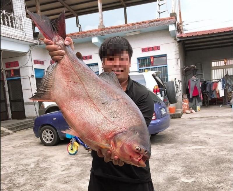 原PO秀出在高雄美濃湖釣到的大魚。(圖擷自爆怨公社)