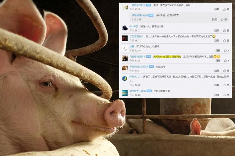 中國7月豬肉大漲85.7%,中國網友痛罵「價格可控,控你媽」。(路透、微博,本報合成)