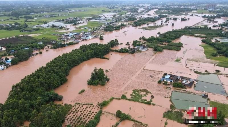 8月12日,四川眉山岷江支流思蒙河東坡區段,多個沿河鄉鎮民房和農田被淹,受災嚴重。(圖擷取網路)