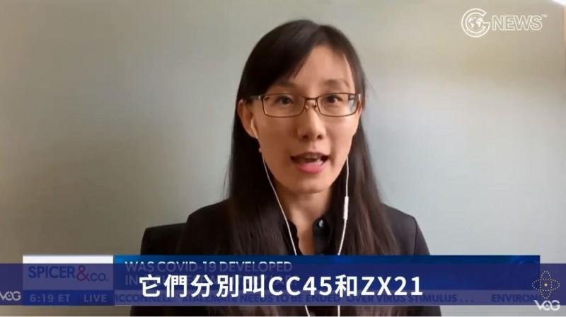 閻麗夢公布,新型冠狀病毒是解放軍根據「CC45」、「ZX21」這2個有害病毒改造出來的。(圖取自Max News/GTV)