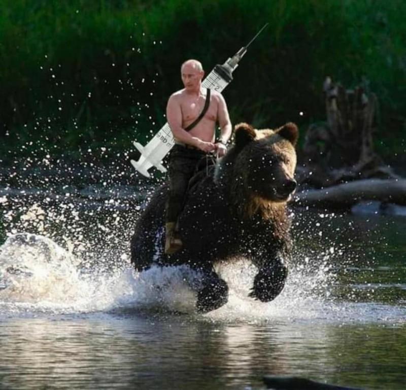 普廷在臉書PO出自己被網友惡搞、著名的「裸上身騎熊」哏圖,並在背上PS上一個大大的針筒。(擷取自普廷臉書)