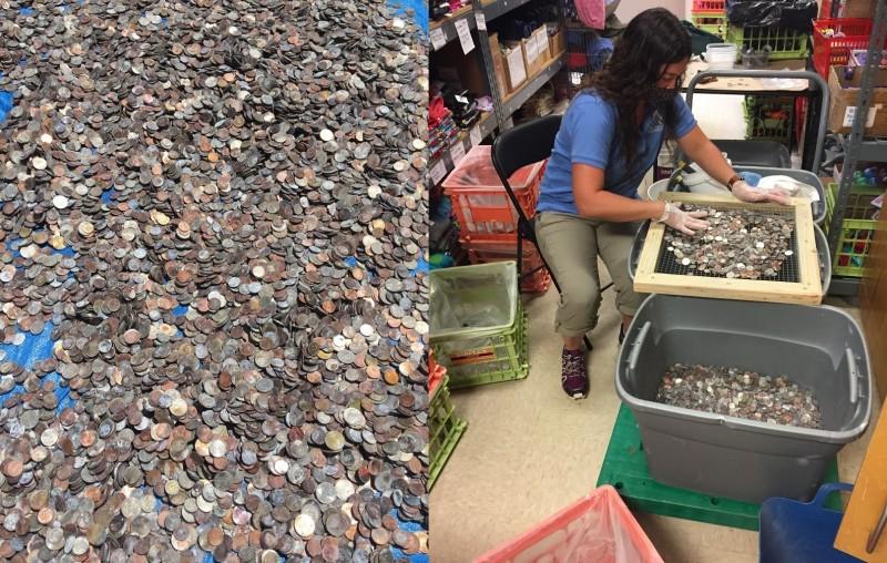 美國一處水族館,在14年未清的許願池中,撈出400公斤的許願幣。(圖取自「NC Aquarium at Pine Knoll Shores」臉書)