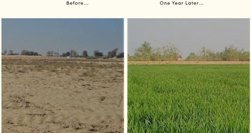 大面積沙漠化為良田已成為可能。(擷取自「Desert Control」官方網站。)