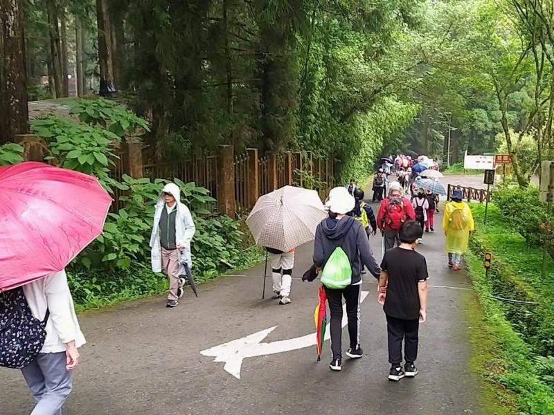 溪頭自然教育園區,今年7月入園逾27萬人次,創開園50年新高紀錄。(記者劉濱銓翻攝)