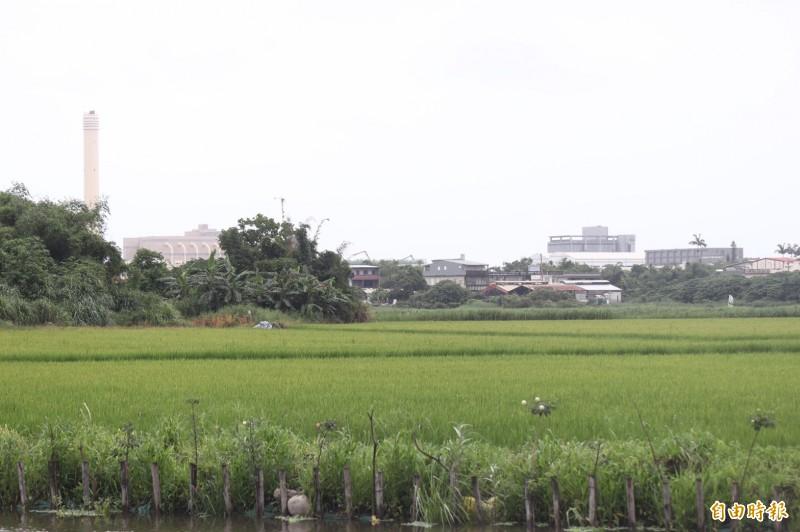 宜蘭縣52甲生態農事觀光權益促進會理事長邱錫奎,被檢舉違規在國家級濕地內興建水池等違規設施,但縣府認定邱的土地不算濕地保育法定義的濕地,堅持以農發條例處理。(記者林敬倫攝)