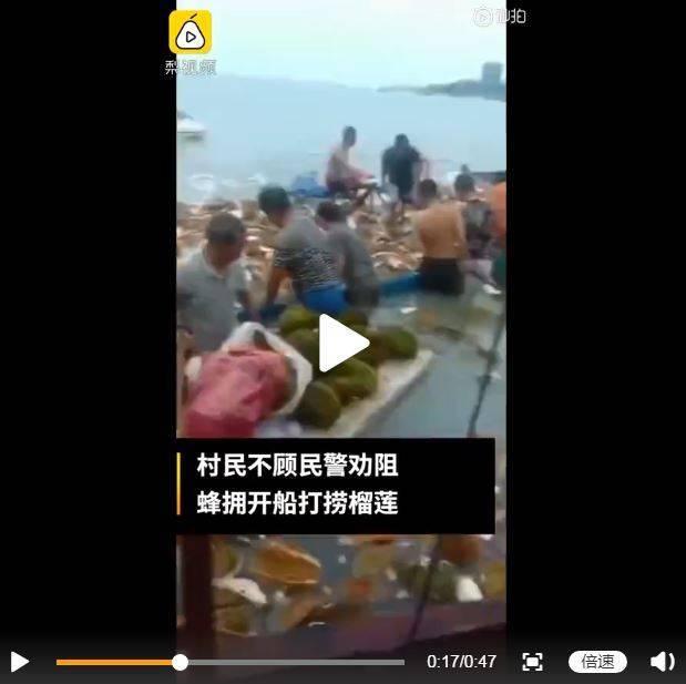 上百名村民不聽勸阻下海哄搶,當晚集體中毒。(圖擷取自微博)