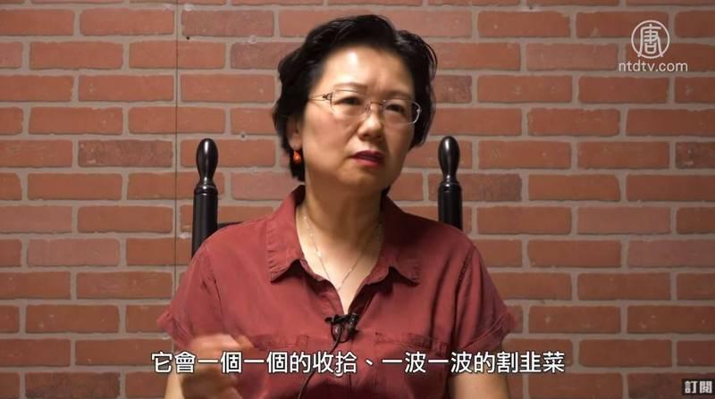 王呼籲中國民營企業站出來支持中國民主化,否則沒有希望。(新唐人老外看中國提供)