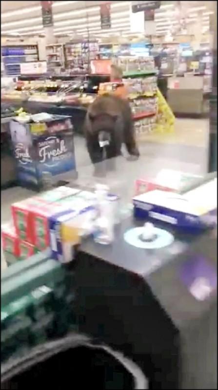 美國加州金斯海灘的「喜互惠」超市上月25日驚見一隻熊光臨。(路透)