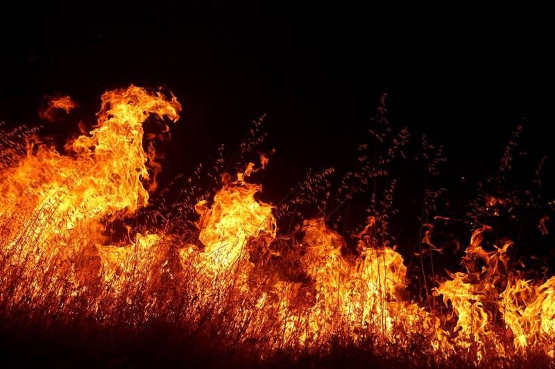 美加州塞拉國家森林猛瑪池水庫,有上千人遭遇山林野火圍困,當局展開空運疏散行動。加州野火示意圖。(法新社)