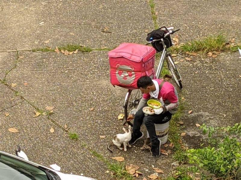女網友貼出熊貓外送員餵食腳邊的喵星人。(圖擷自Carlyn Ordoñez 臉書)