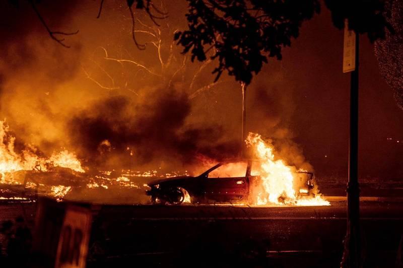 美國俄勒岡州野火燒死13歲男童和71歲阿嬤,男童的愛犬躺在他的膝蓋上一同殞命。(美聯社)