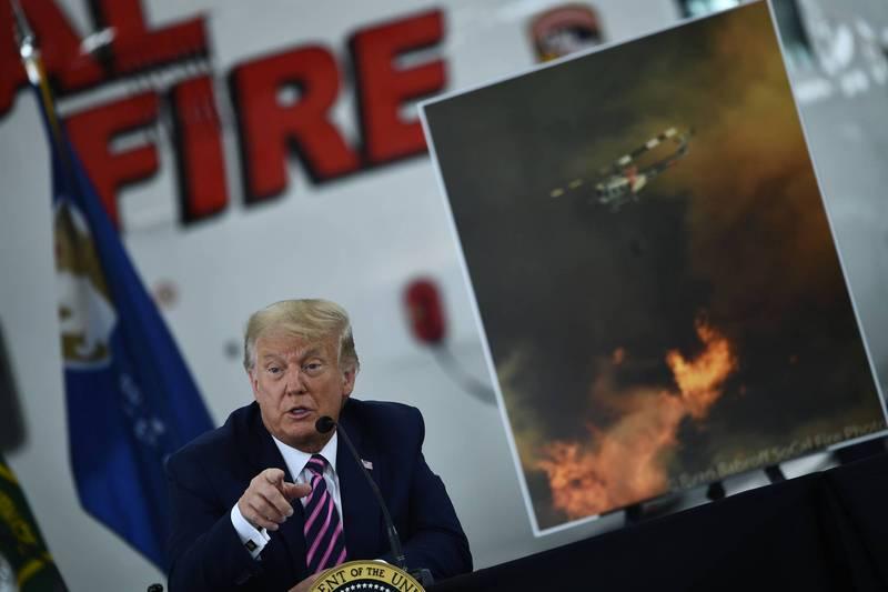 川普認為森林沒有清理是野火主要成因之一。(法新社)