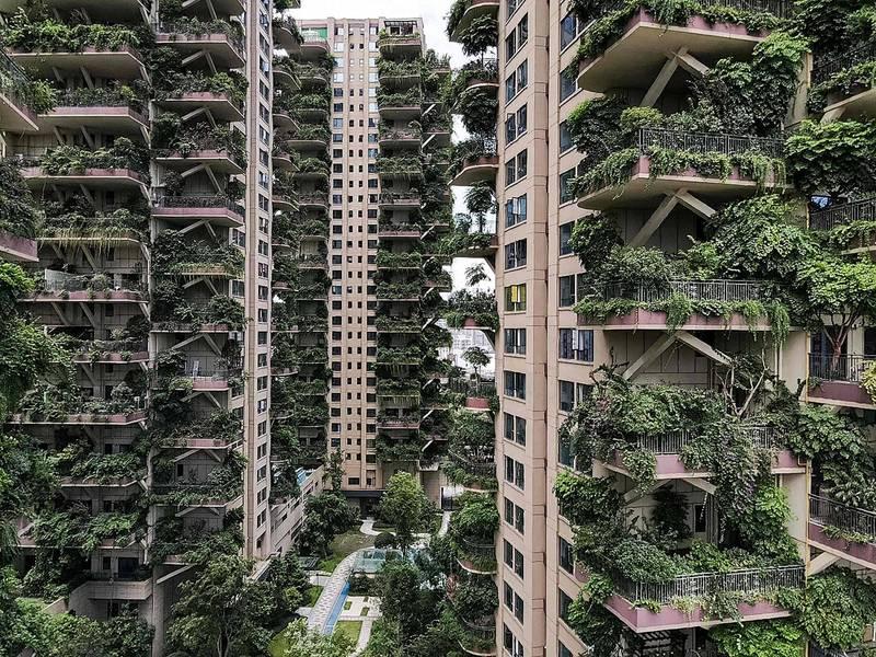 中國官媒《央視》曾報導四川省成都市新都區「七一城市森林花園」,採納「垂直森林」理念,號稱是中國第一個第四代住宅計畫,共有8棟30層樓高的綠色建築,每戶陽台都附有40至100平方公尺不等的花園。(法新社)