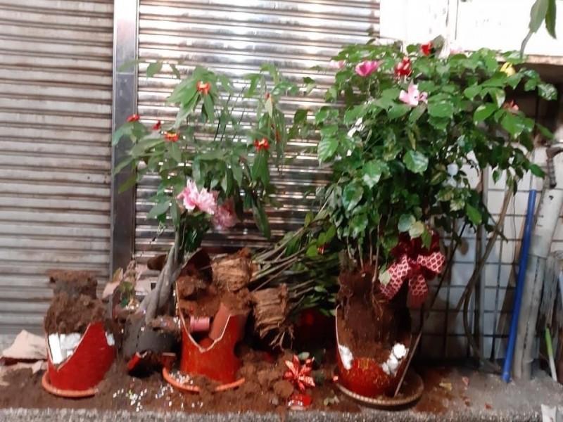 福星藥頭排骨民族店3個盆栽遭砸毀。(記者丁偉杰翻攝)