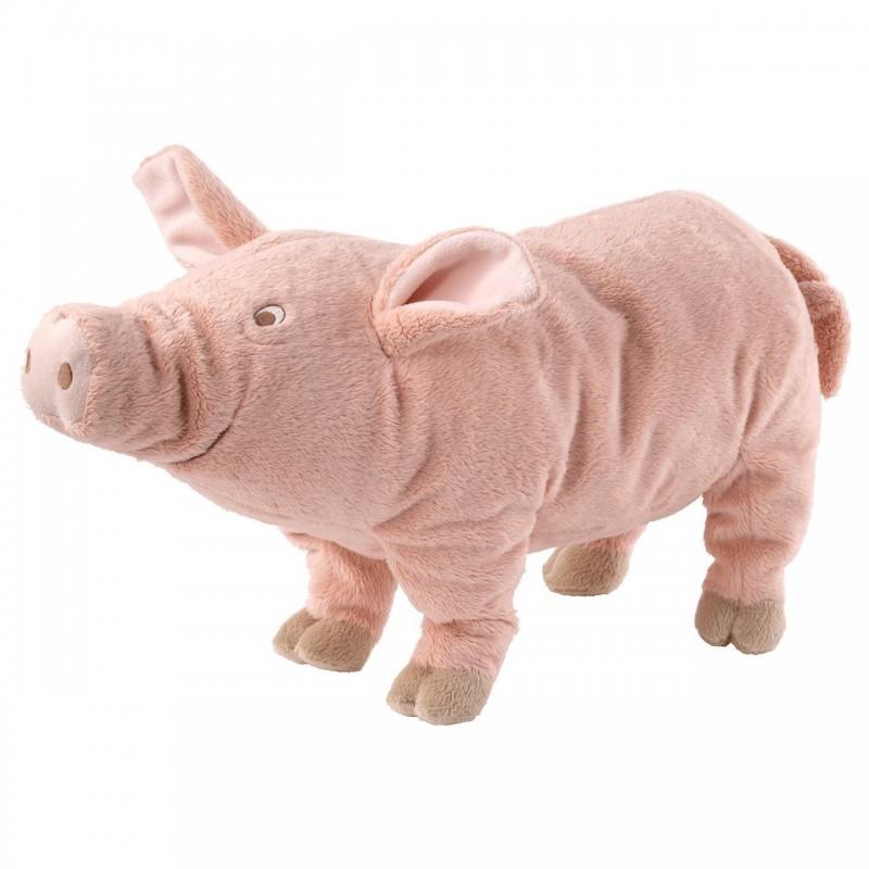 台北市長柯文哲明將赴議會進行施政報告,國民黨團將主打美豬議題,由議員手持粉紅豬布偶將他包圍,逼柯文哲明確表態。(台北市議員陳重文提供)