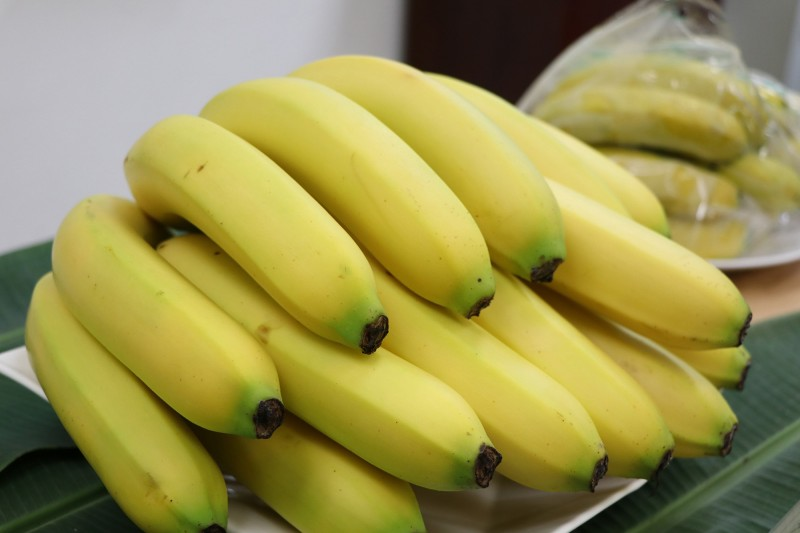 農糧署出手救蕉價 拍賣價拉到每公斤17.3元