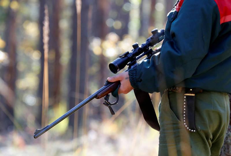 美國密西根州近日發生一起駭人聽聞的意外,11歲的男童洛克跟著全家一起去森林打獵,繼父卻將他誤認成了一頭鹿,不慎槍殺。圖為打獵示意圖,與本新聞中人物無關。(路透)