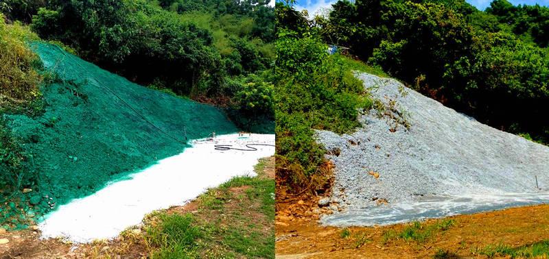 八卦山區有地主擅自開挖整地後,噴上綠色油漆想躲過查察。(縣府提供,本報合成)