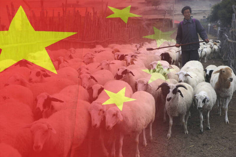 中共的「禁牧令」讓內蒙古牧民相當不滿,痛斥當局此舉是破壞蒙古不可或缺的文化。(本報合成)