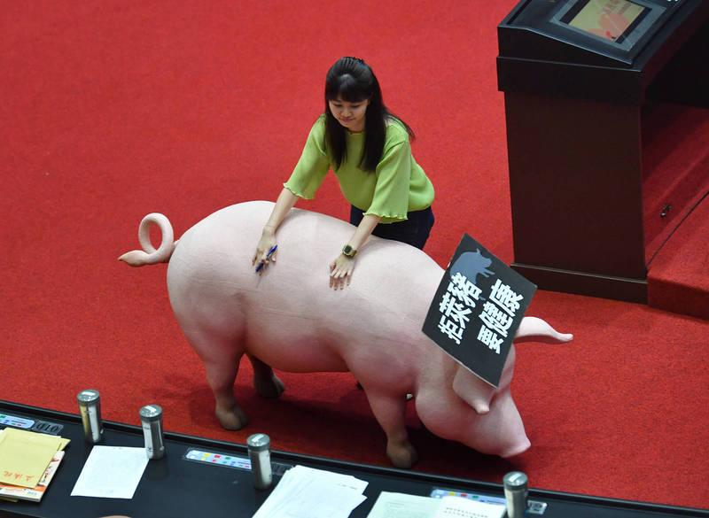 藍營抬豬進議場抗議 高嘉瑜「搬豬」清場笑:難不倒我的!