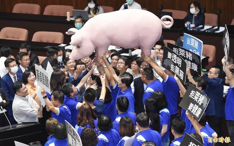 國民黨在18日立會開議時,抬道具豬進議場抗議。(資料照)