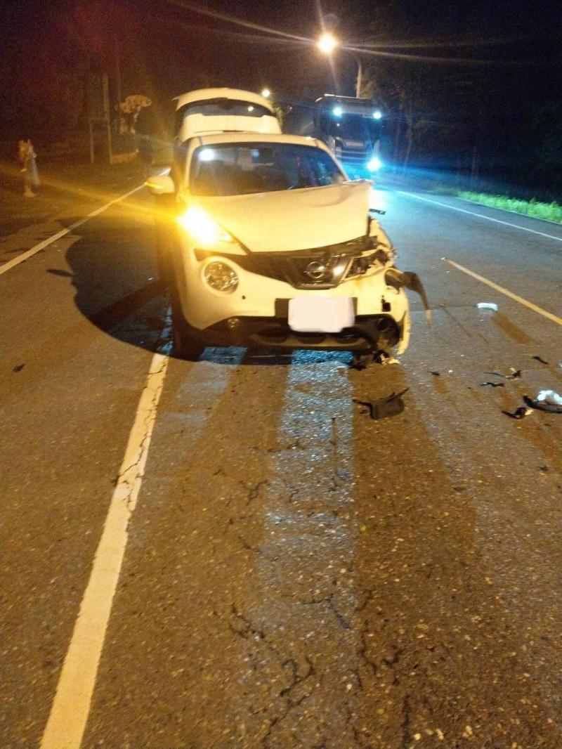 吳姓駕駛載一家3口北上,昨晚經過舞鶴台地卻撞到水牛,導致車頭受損,幸虧車上3人沒受傷。(警方提供)