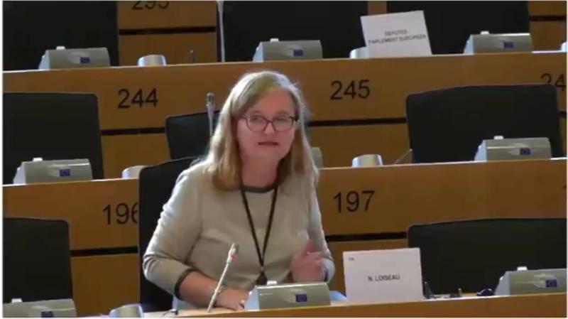 歐洲議會外交事務委員會召開視訊辯論會,中國大使抱怨為不實新聞的受害者。歐洲議會安全與國防小組委員會主席洛瓦索反擊稱中國才是不實新聞的源頭。(圖擷自推特)