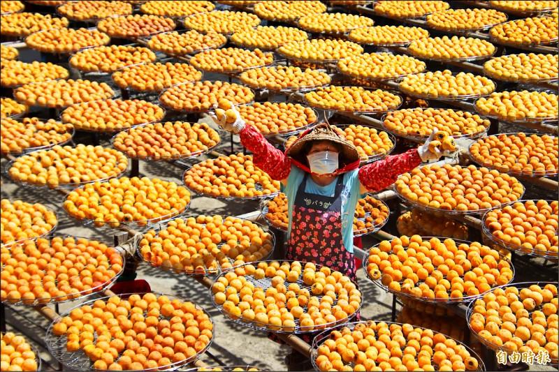 今年的柿餅婆婆造型配合疫情,戴上口罩,呼籲來客跟著她這樣做,跟她手上做日光浴中的柿餅們保持安全社交距離。(記者黃美珠攝)